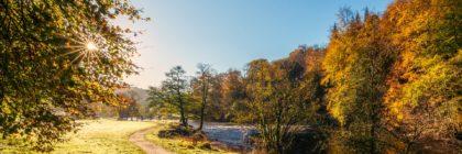 Ein Pfad, Weg im Herbst